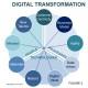 Digital Transformation has to become Digital Evolution